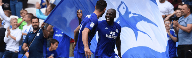 Cardiff The Most Profitable Championship Team To Back After 5 Games