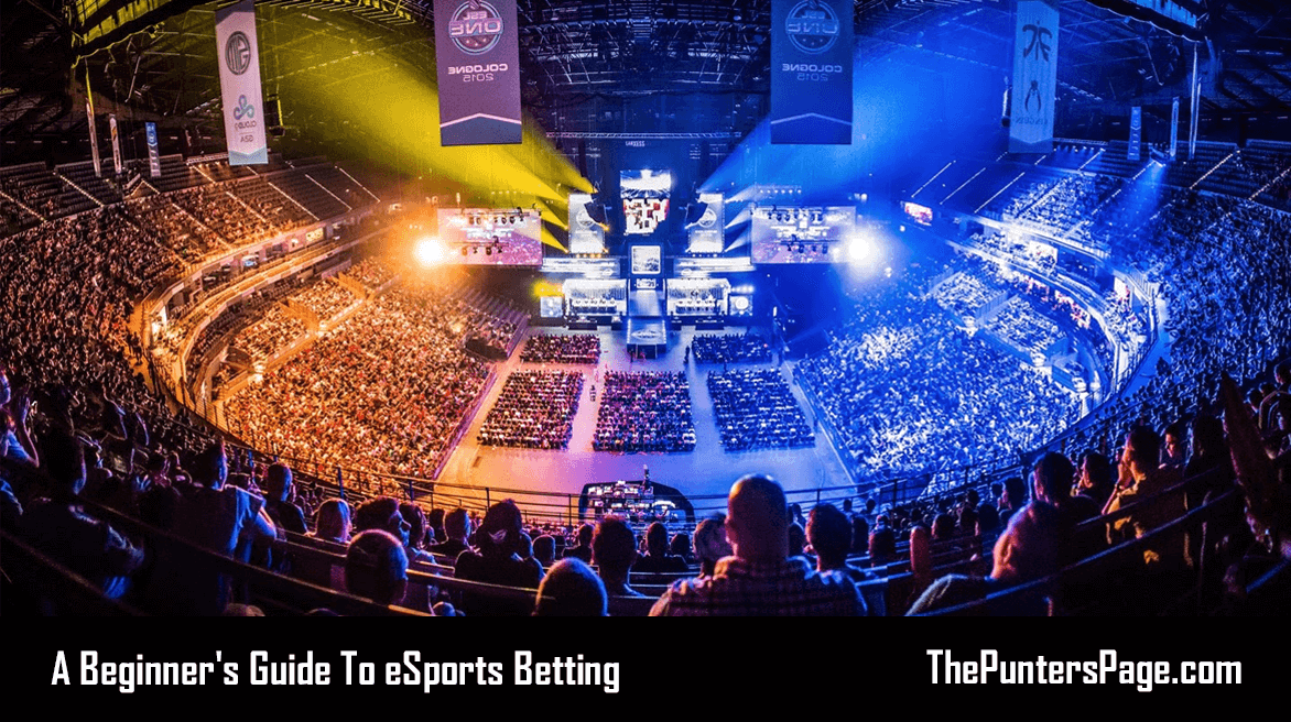 eSports Betting Beginner's Guide