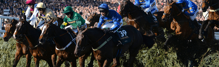 2018 Grand National Ultimate Betting Guide Stats, Facts, Trends & Odds