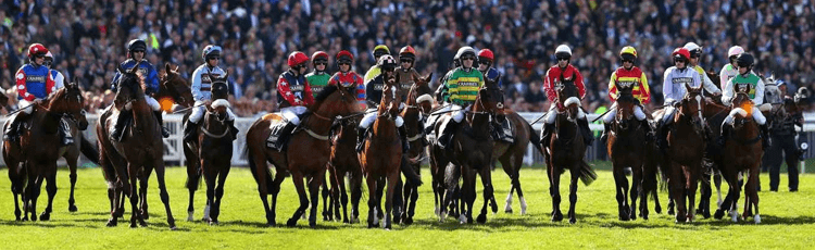 Grand National Each Way Place Offerings By Bookmaker