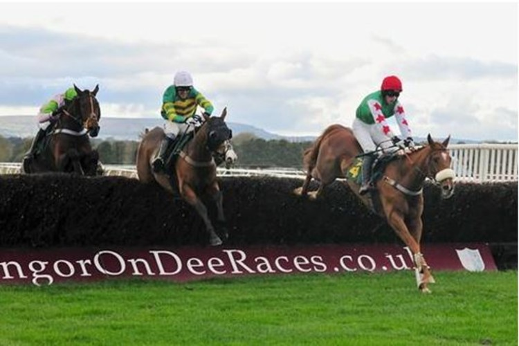 Horse racing betting terms explained variation baccarat-betting