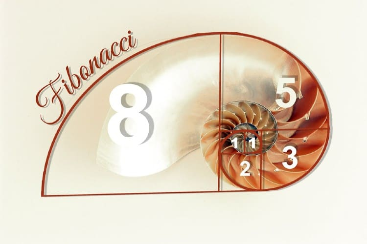 fibonacci betting