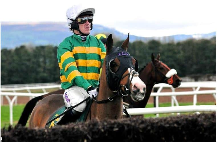 Winner of the Cheltenham Gold Cup