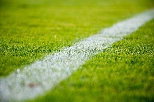 Close-up Shot of a Football Field White Line