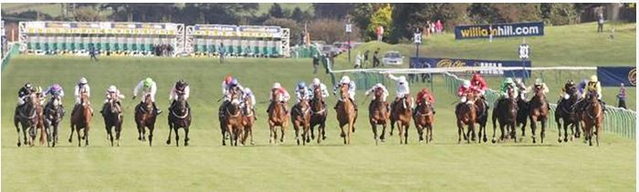 Scottish Grand National Horse Racing Structure