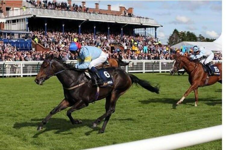 Scottish Grand National horse race