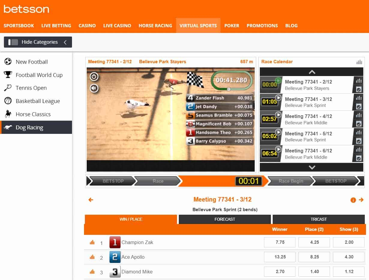 screenshot of virtual greyhound racing betting at Betsson