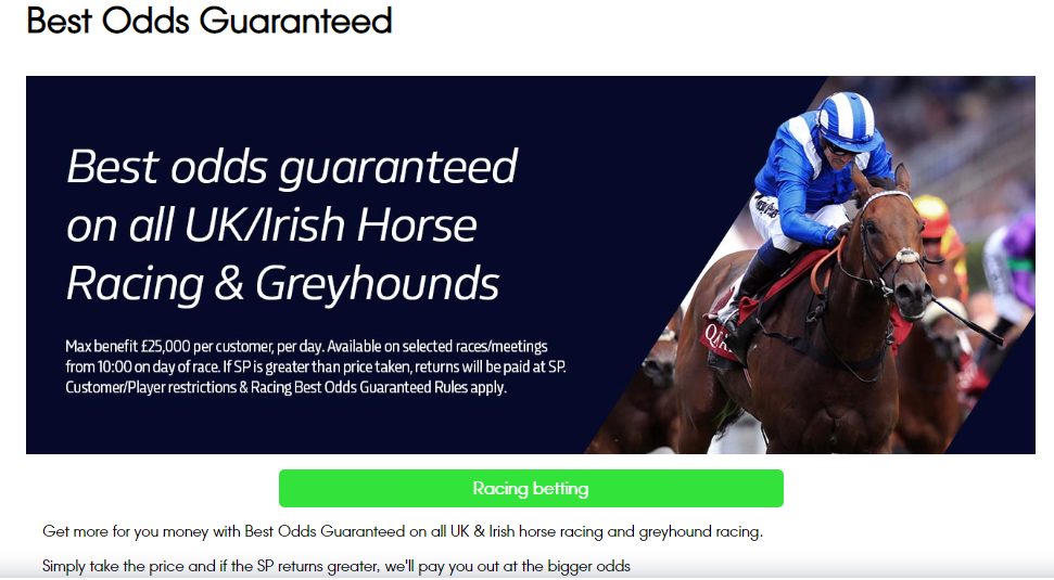 Irish horse racing betting terms off track betting locations rochester ny apartments
