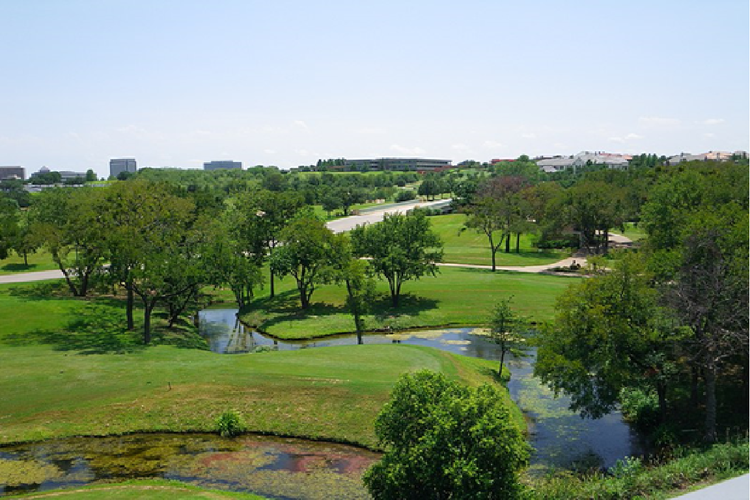 AT&T Byron Nelson Betting
