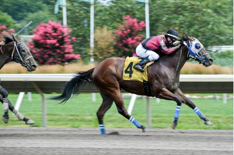 epsom derby betting