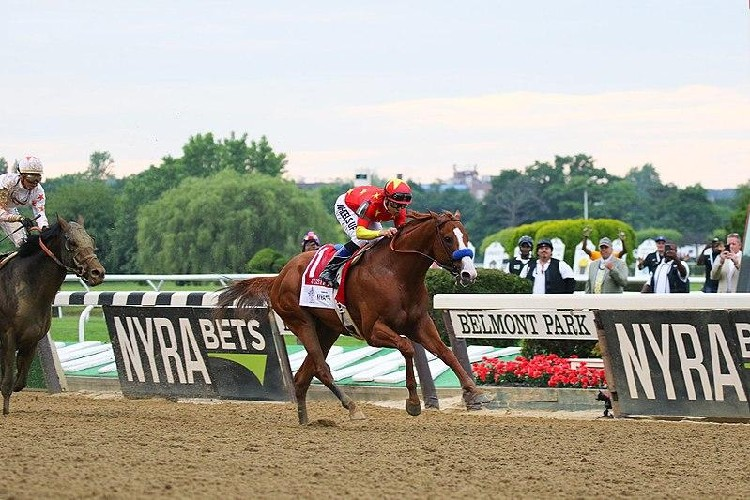 horses racing at the belmont stakes