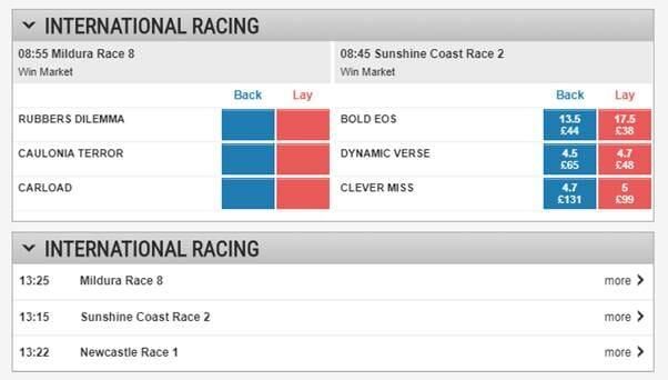 screenshot of Ladbrokes international racing market
