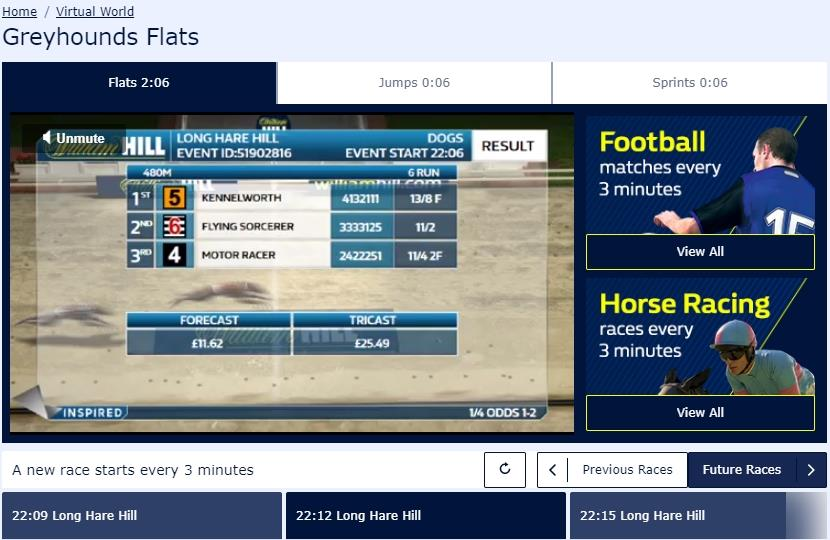 Virtual Greyhounds Flats race at William Hill with names and odds displayed