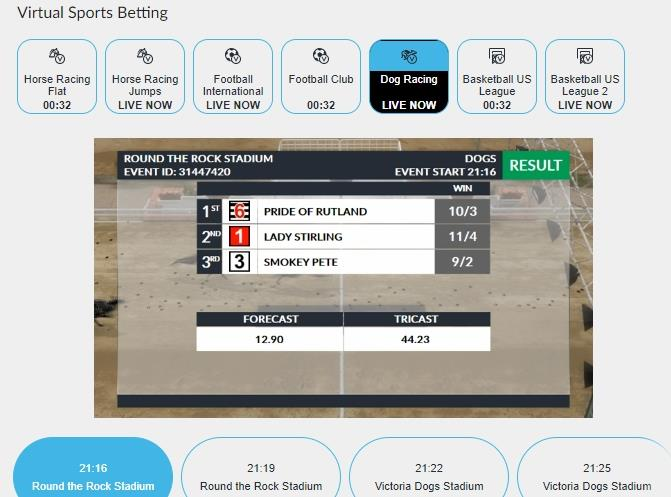 Odds displayed for virtual greyhound race at BetVictor
