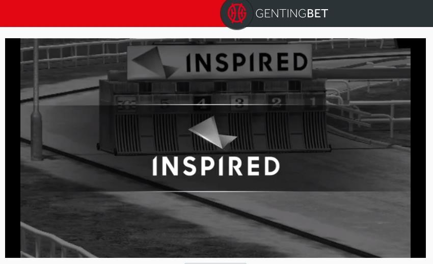 Virtual Greyhounds at GentingBet