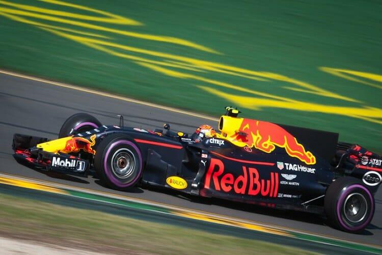 Max Verstappen - Red Bull Driver
