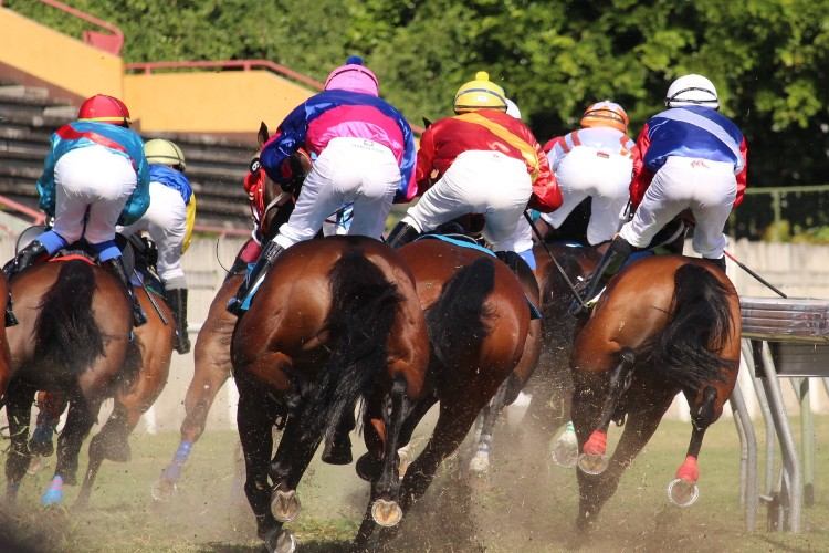 Dutching Calculator in Horse Racing
