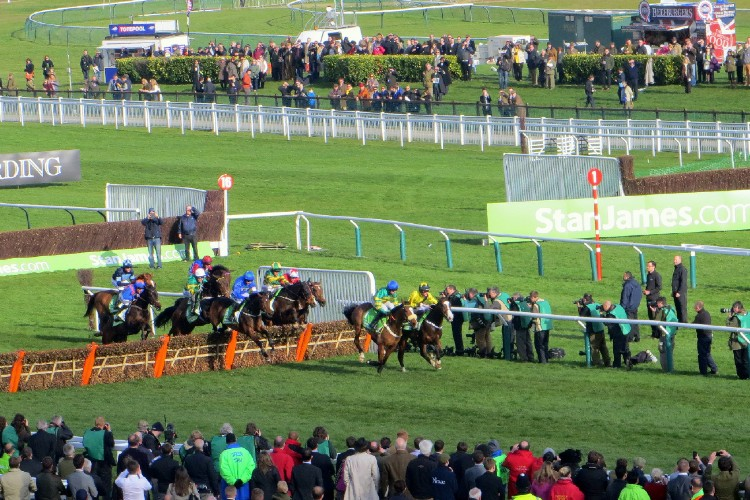 an image of horses racing during Cheltenham