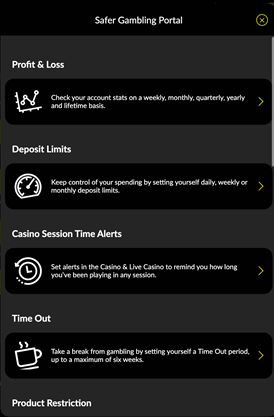 Safer Gambling screenshot