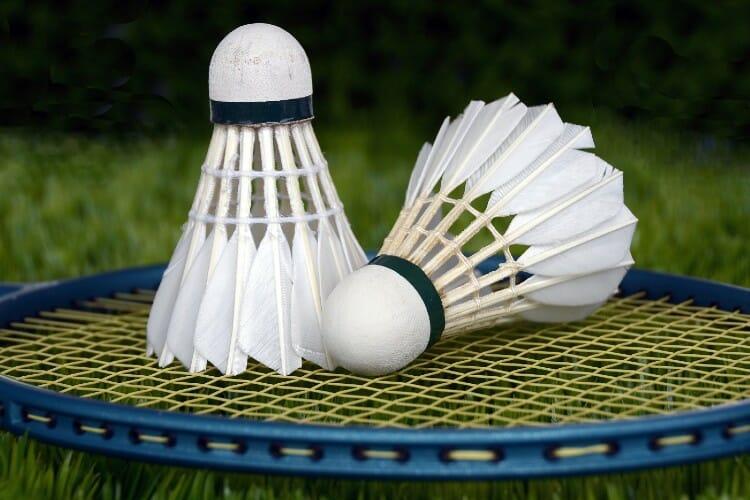 two Badminton shuttlecocks on racket